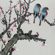 Pair Of Birds On A Cherry Branch Poster