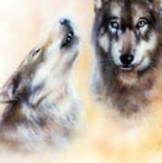 Pair Of Wolves Poster