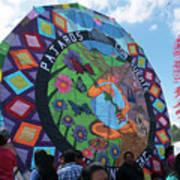 Pajaros Giant Kite Poster