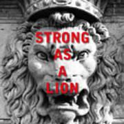 Palazzo Pitti Firenze Lion Poster