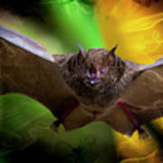 Pale Spear-nosed Bat In The Amazon Jungle Poster
