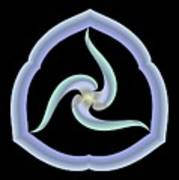 Pale Swirl Poster