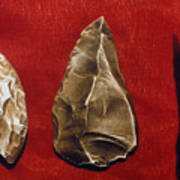 Paleolithic Tools Poster