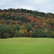 Autumn Palette Poster