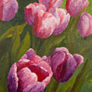 Palette Tulips Poster