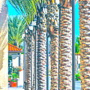 Palm Columns Poster