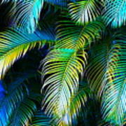 Palm Leaves In Blue Poster