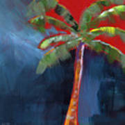 Palm Tree- Art By Linda Woods Poster