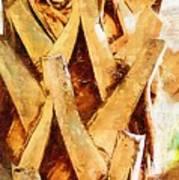 Palm Tree Bark Poster
