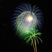 Palm Tree Fireworks Poster
