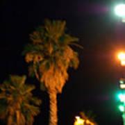 Palm Tree Glow Poster