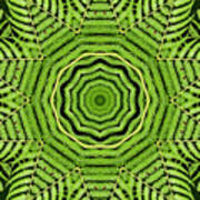 Palm Tree Kaleidoscope Abstract Poster