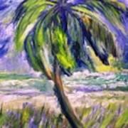 Palm Tree On Windy Beach Poster