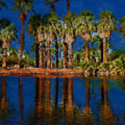 Palm Trees On The Water Poster