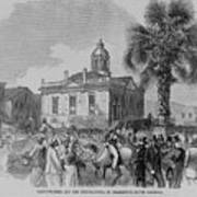 Palmetto Tree And Old Custom House Poster