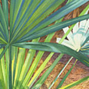 Palmettos And Stellars Blue Poster by Marguerite Chadwick-Juner