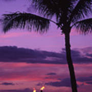 Palms And Tiki Torches Poster