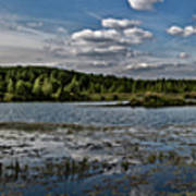 Panorama Of The Lake In Elkino Poster