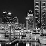 Panoramic Baltimore In Black And White Poster
