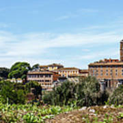 Panoramic View Of Rome Poster