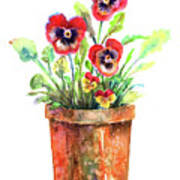 Pansies In A Clay Pot Poster