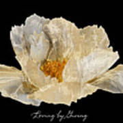 Paper Peony Loving By Giving Poster