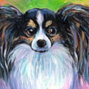 Papillon Dog Painting Poster