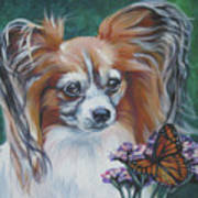 Papillon With Monarch Poster