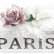 Paris Dreamy Pastel Pink Roses On Paris Book - Romantic Paris Roses And Books Shabby Chic Art Poster