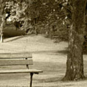 Park Bench In A Park Poster