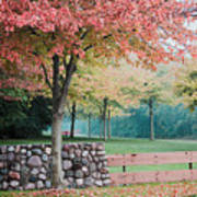 Park In Autumn/fall Colors Poster