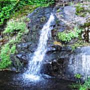 Parker Creek Falls Poster