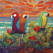 Parrots On Sunset Beach Poster