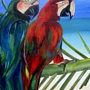 Parrots On The Beach Poster