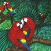 Parrots Preening Poster