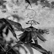 Passion Flower Black And White Poster