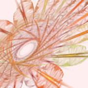 Pastel Spiral Flower Poster