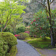 Path At Japanese Garden Poster
