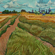 Path Through A Wheat Fields Poster