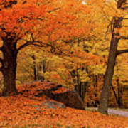Path Through New England Fall Foliage Poster