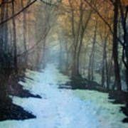 Path Through The Woods In Winter At Sunset Poster by Jill Battaglia