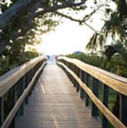 Path To Marco Island Beach Poster