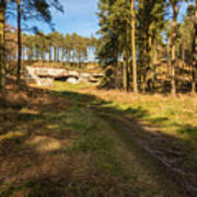 Path To St Cuthbert's Cave Poster