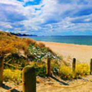 Path To Whiritoa Beach, Coromandel Poster