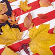 Patriotic Autumn Colors Poster