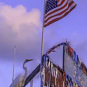 Patriotic Egret Poster