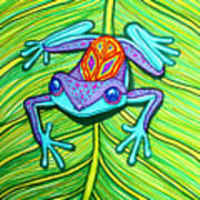 Peace Frog On A Leaf Poster