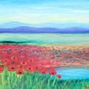 Peaceful Poppies Poster