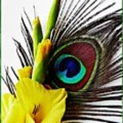 Peacock Feather And Gladiola 3 Poster