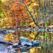 Peak Fall Foliage At The Black River Poster
